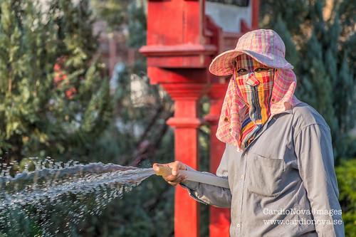 Thai gardener, Hua Hin