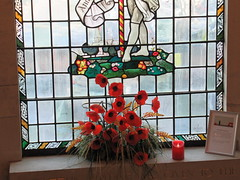 24/1/2017, 24/365, At the window IMG_2230 (tomylees) Tags: january 2017 tuesday 24th braintree essex project 365 poppy window townhall
