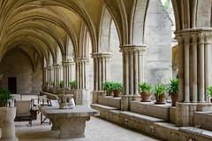 Abbaye de Royaumont (Sebmarg) Tags: abbaye abbayederoyaumont asnièressuroise îledefrance france