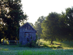 Farm at Sunrise (Jae at Wits End) Tags: wood old morning light sun plant building tree green texture nature field grass architecture barn yard rural america sunrise landscape outside dawn daylight early illinois am woods midwest shadows exterior view natural outdoor decay farm country agrarian rustic shed lawn scenic peaceful structure pale storage faded american dew crop worn weathered verdant agriculture simple picturesque plain idyllic turf storehouse bleached sod faint sunup daybreak bucolic arcadian provincial morn outbuilding firstlight farmbuilding farmstead discolored rustical farmstructure