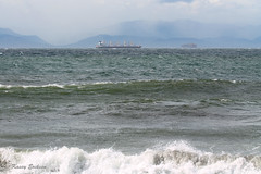 From Dallas Road in Victoria (KaseyEriksen) Tags: ocean sea beach water dallas waves ships victoria rough beachcombing cans2s