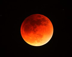 Super Moon Total Eclipse,  9/27/15, with stars (edhiker) Tags: eclipse lunar bloodmoon edhiker sn6 schmidtnewtonian supermoon