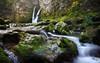 La tine de Conflens #3 Bis (cedric.chiodini) Tags: water landscape switzerland bravo suisse elle des paysage rochers mousse envoie tinedeconflens topissime rondins unetuerie