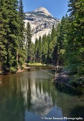 Yosemite National Park. (GeneInman.com) Tags: california nikon grandcanyon roadtrip yosemite halfdome yosemitenationalpark yosemitevalley d800 ipad granitedome geneinmanphotography geneinman wwwgeneinmancom snapseed nikond800ipadsnapseedyosemitegrandcanyonroadtriphalfdomegranitedomeinyosemitevalleyinyosemitenationalpark