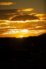 Good Morning_DSC7629_002 (nabe121) Tags: g sony fe f4 70200mm oss sonyalpha emount ilce7m2 7m2