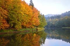 Couleurs d'automne (Croc'odile67) Tags: autumn nature automne landscape nikon reflet paysage reflexion d3200 vosgesdunord afsdx18105