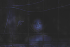 04/11/2015 (andré betron) Tags: street old blue boy wild music woman naturaleza sun mountain flores flower men eye blancoynegro window nature beautiful face look vintage garden hair atardecer fire kid eyes hand retrato farm surrealism jardin noise crepusculo retrait cigarrete clima ligths surrealismo weater monocromatico breakingdawn p510