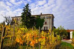 Valli Unite (caiodorigon) Tags: italy italia piemonte unite piedmont valli