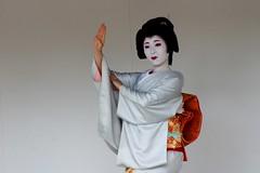 -29 (nobuflickr) Tags: japan kyoto maiko geiko       kamishichiken  kimobo kamigamojinjashrine  20151103dsc06770