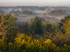 Goldenrod and the Grand River Valley (virgil martin) Tags: panorama ontario canada fog landscape goldenrod gimp grandriver elora wellingtoncounty grandrivervalley microsoftice oloneo olympusomdem5