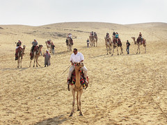 Traveling by Camel in the Sahara Desert (shaire productions) Tags: travel sahara beauty photography sand desert image egypt picture camel photograph pyramids traveling camels imagery sevenwonders worldtravel