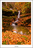 Colours Of Autumn (flatfoot471) Tags: autumn rural landscape scotland waterfall perthshire normal kenmore lochtay 2011