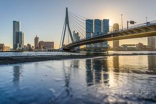 Cold Rotterdam