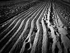 plowed (imbroglionefiorentino) Tags: 2017 gennaio beach spiaggia santamariadicastellabate canoneos60d campania cilento castellabate bn blackwhite bwartaward bianconero blackandwhite bw explore explored fluidr fluidrexplored flickrclickx flickr