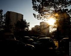 Les Larris en contre-jour (Fontenay-sous-Bois - Officiel) Tags: fontenay fontenaysousbois regionparisienne valdemarne iledefrance 94 94120 soleil sun contrejour larris light lumière