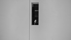 that girl in the window (pbo31) Tags: sanfrancisco california nikon d810 color december 2016 boury pbo31 bayarea sanfranciscomuseumofmodernart sfmoma soma city architecture blackandwhite face white girl window vertical
