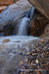 IMG_9246F (PrashantVerma) Tags: palm springs california west fork falls desert spring water indian canyon
