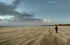Juist im Januar (hardi_630) Tags: juist winter strand sturm storm stormy