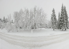 Snowman Panorama Snowpocalypse 2017_44