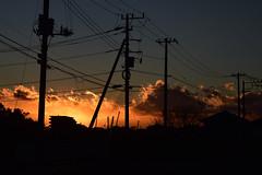 20170113_007_2 (まさちゃん) Tags: 電柱 電線 silhouette シルエット 夕暮れ時 夕陽