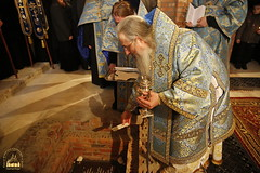 The Laying of the Foundation Stone of Saint John the Russian's Church / Закладка храма св. Иоанна Русского (24) 20.02.2017