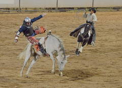 Get Off Me!!! (Eleu Tabares) Tags: rodeo horse contest riding bareback roping bronc wild