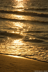 Golden Waves (David J. Greer) Tags: clearwater beach florida gulf coast water waterfront sunset dusk surf wave waves sand sun