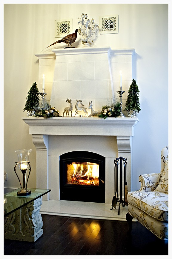 RSF Opel wood burning fireplace