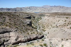 IMG_0005-2.jpg (DrPKHouse) Tags: arizona unitedstates loco goldenvalley bullhead