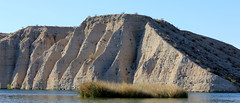 IMG_0154.jpg (DrPKHouse) Tags: arizona unitedstates loco lakehavasucity