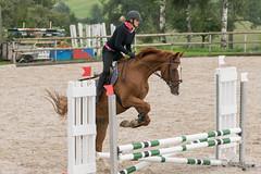 DSC06111_s (AndiP66) Tags: horse schweiz switzerland sony luzern september alpha concours pferd ch horsejumping wettbewerb springen 2015 f456 sursee sonyalpha springreiten kantonluzern cantonlucerne menznau andreaspeters ruswil buholz pferdespringen sony70400mm 77m2 vereinsspringen sal70400g2 sony70400mmf456gssmii a77ii ilca77m2 77ii 77markii slta77ii