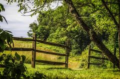 Farm Trail_DSC4836 photoshop NIK edit (nkatesphotography) Tags: nature landscape outdoors scenic farms