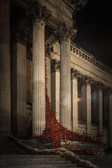 873006 Liverpool Poppies (Walks Walker) Tags: uk light red england black building london tower st architecture tom night liverpool dark paul evening hall blood long exposure touch walker poppy poppies column piper lands swept hdr cummins seas colonnade merseyside thewalkertouch