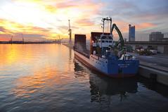 Wilson Saar (larry_antwerp) Tags: haven port ship belgium belgi vessel wilson antwerp  bulk  schip                     wilsonsaar  euroports    9125841
