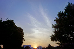 DSC09982c (haru__q) Tags: sunset sky sony jupiter12 jupiter   a7