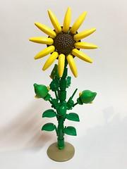 (Alego37) Tags: npu moc lego tournesol flower fleur frenchtouch