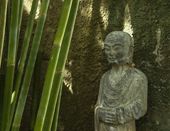 Buddha and bamboo (Tim Ravenscroft) Tags: bamboo buddha statue selby gardens florida usa
