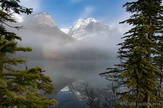 Fog on Emerald Lake. BC. Canada.