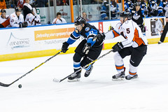 "Missouri Mavericks vs. Wichita Thunder, January 7, 2017, Silverstein Eye Centers Arena, Independence, Missouri.  Photo: John Howe / Howe Creative Photography • <a style=""font-size:0.8em;"" href=""http://www.flickr.com/photos/134016632@N02/31872454840/"" target=""_blank"">View on Flickr</a>"