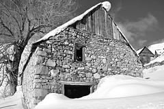 Baqueira 25 (Eloy Rodríguez (+ 5.000.000 views)) Tags: baqueira nautaran salardú nieve snow neige alud aludes aludesdenieve avalanche quitanieves carretera invierno winter hiver winterscape paisaje landscape esqui ski skiing nature baqueiraberet pladeberet beret valdearan valdaran valledearán valderuda bonaigua puertobonaigua argulls viehlla lleida cataluña catalunya españa spain valldaran lavalldaran xmas christmas merrychristmas happynewyear airelibre borda arbol sol cielo cieloazul blancoynegro monocromo eloy rodriguez potd:country=es