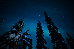 Laponie Finlandaise (doriangiller) Tags: laponie finland lapland aurore boréale aurora borealis light night winter hiver nuit neige snow