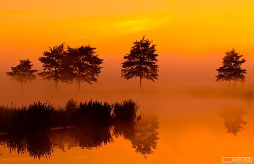Earth Pics - Nederland