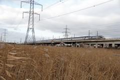 Eurostar (Common Buzzard) Tags: rspb rainham essex train railway eurostar viaduct