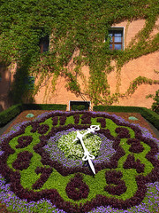 It's nearly half past one! (Magryciak) Tags: zittau germany europe travel trip holiday panasonic lumix flower nature colour garden park clock colours plant flowers