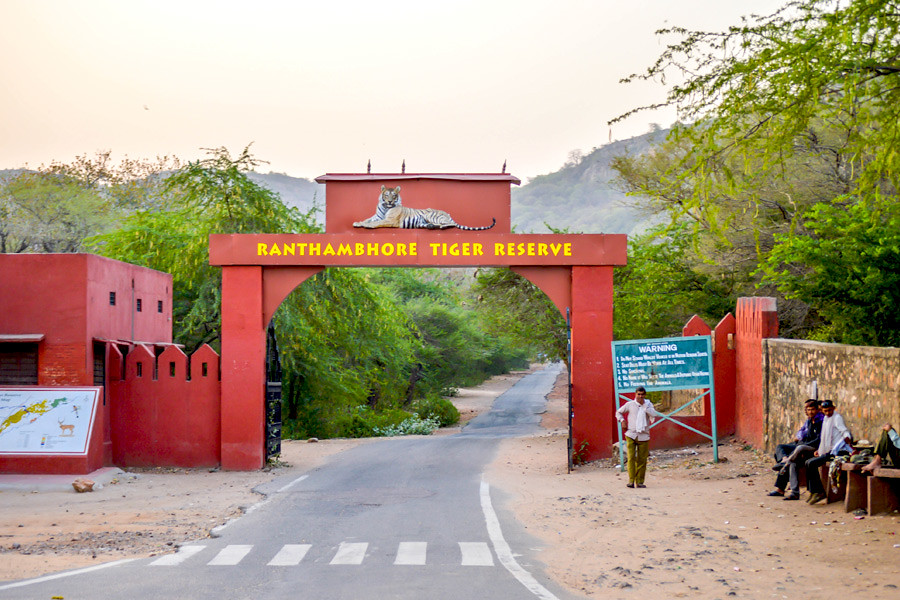 Ranthambore Tiger Reserve in Rajasthan India