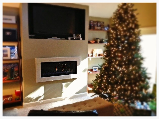 Valor L1 Linear Direct Vent Fireplace. Chattanooga, Tn.