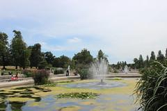 Kensington Garden / Hyde Park