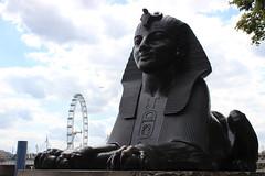 Sphinx @ Cleopatra's Needle