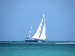114-DSCN9453 (eric15) Tags: sea beach water race cat for boat eva surf sailing wind offshore sailors luna aruba international dash sail regatta sailor optimist sunfish oranjestad surfside