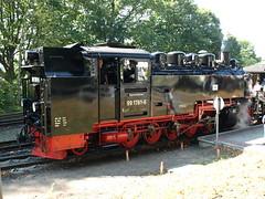 RBB (morten812) Tags: rail trains steam rgen rbb narrowgauge rasenderroland dampf kleinbahn rgenschebderbahn